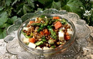 Čočkový salát s chřestem