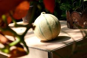 Melounové carpaccio