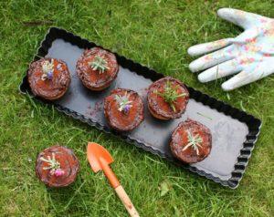 Zahradní koláčky