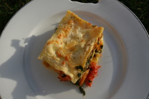 Lasagne dyne jehneci VI